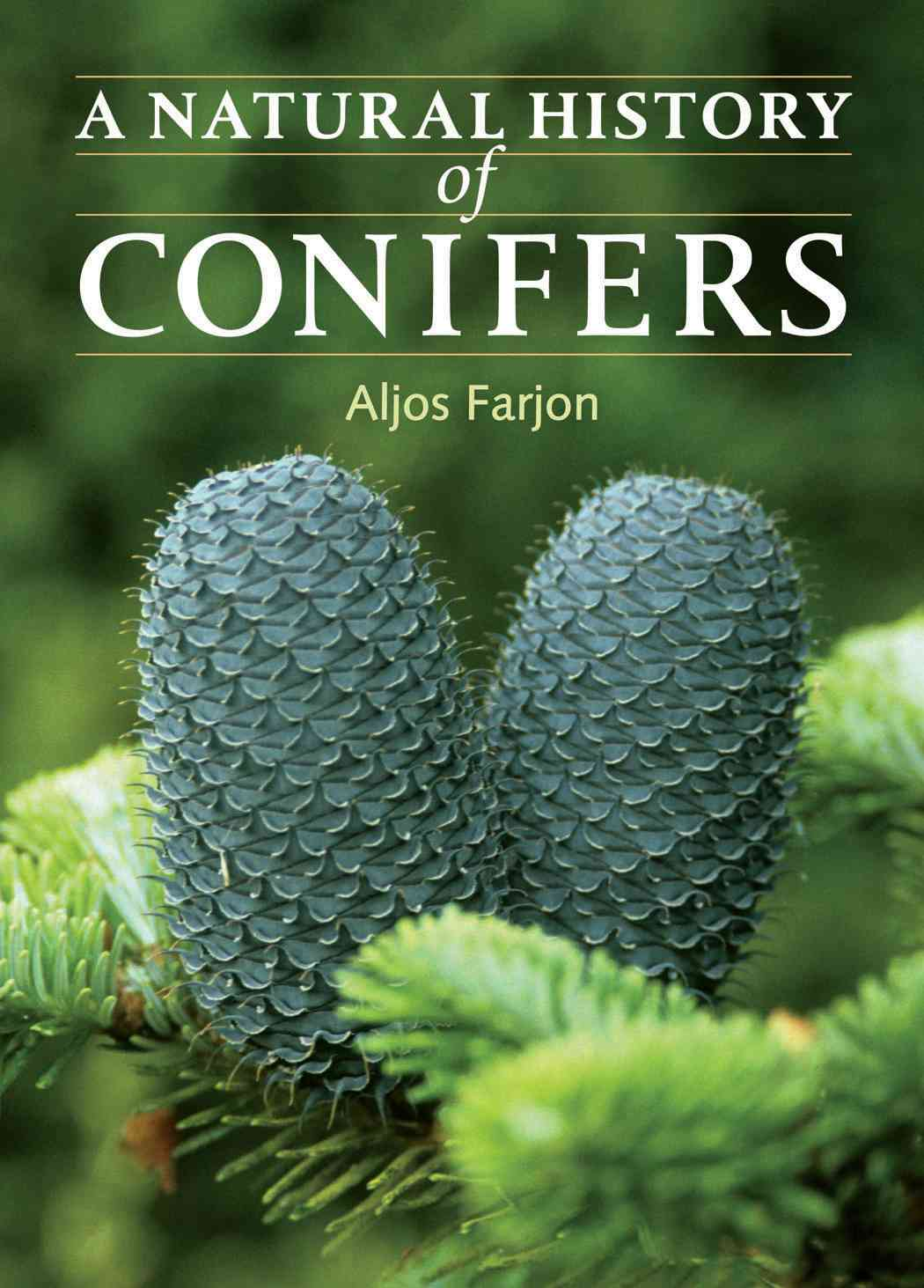 A Natural History of Conifers By Farjon, Aljos